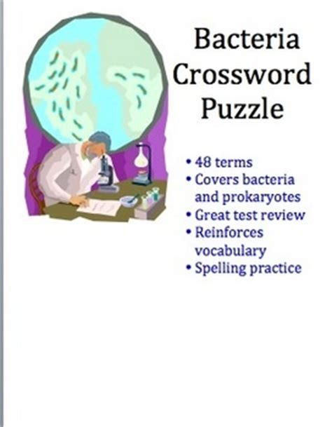 Fourth grade Vocabulary Lessonplans, homework, quizzes